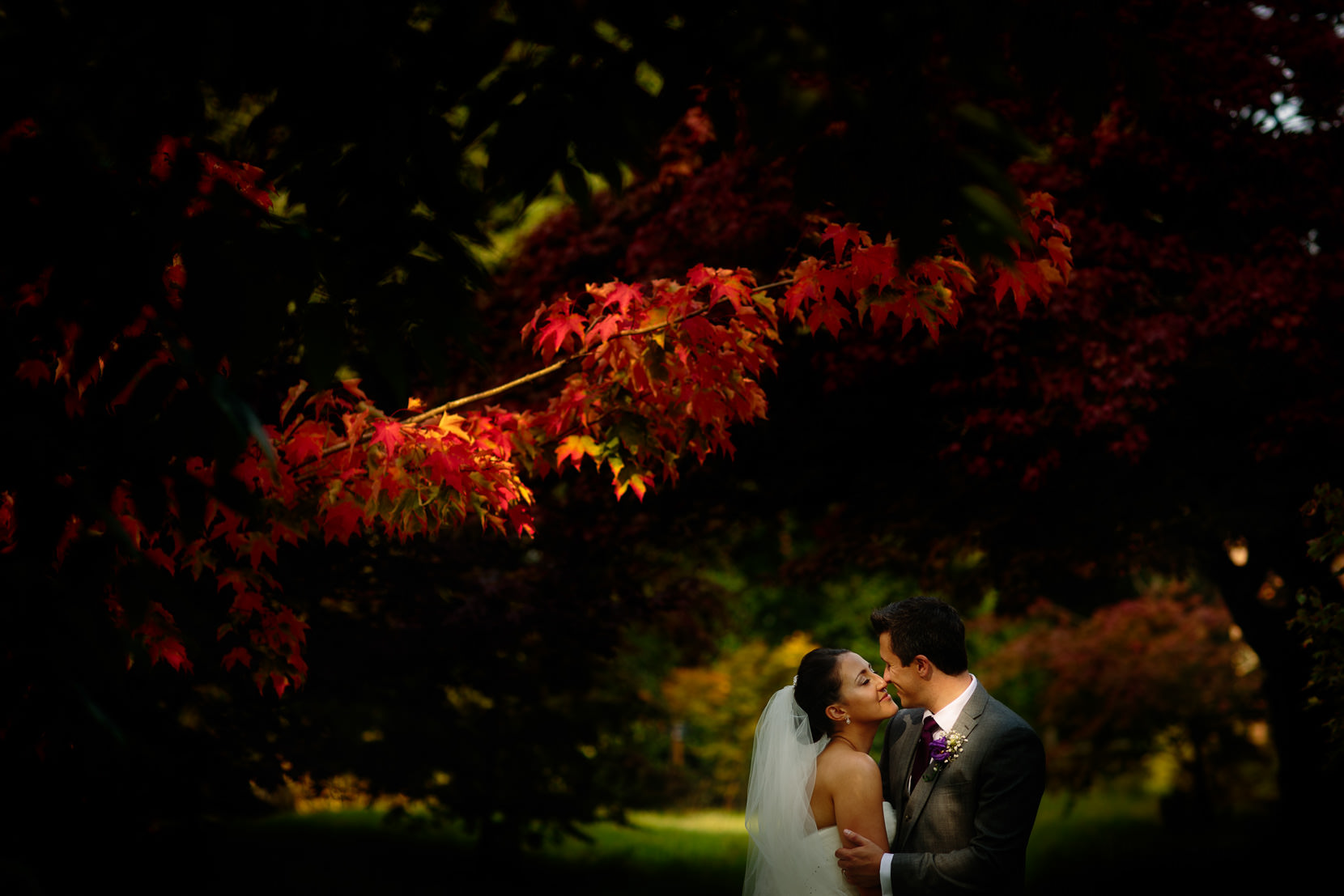 Shropshire Wedding Photography with a beautiful bride and her groom at Combermere Abbey