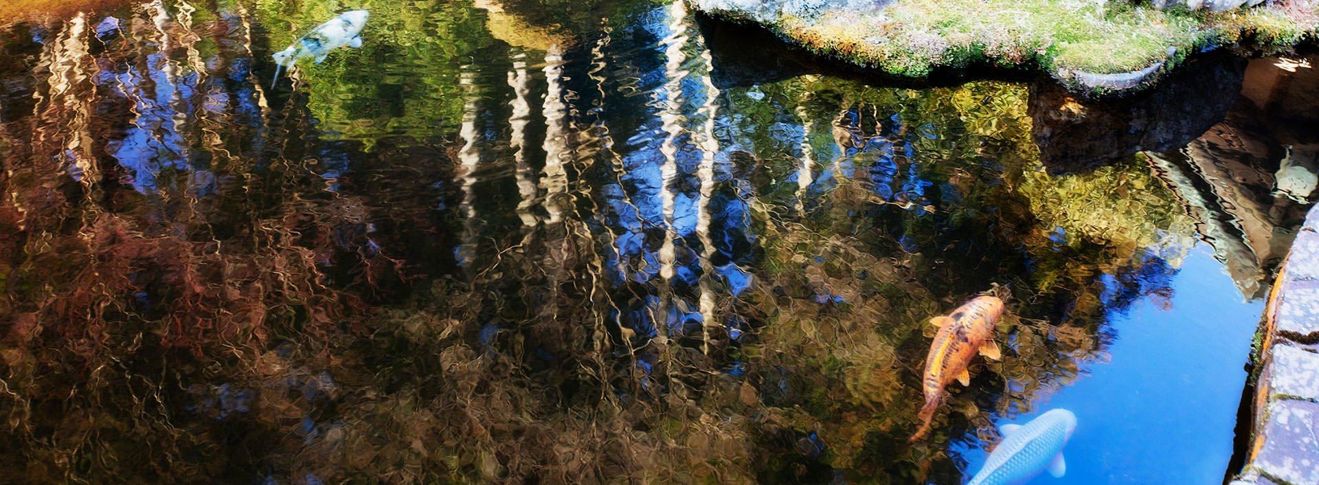landscape photography 19
