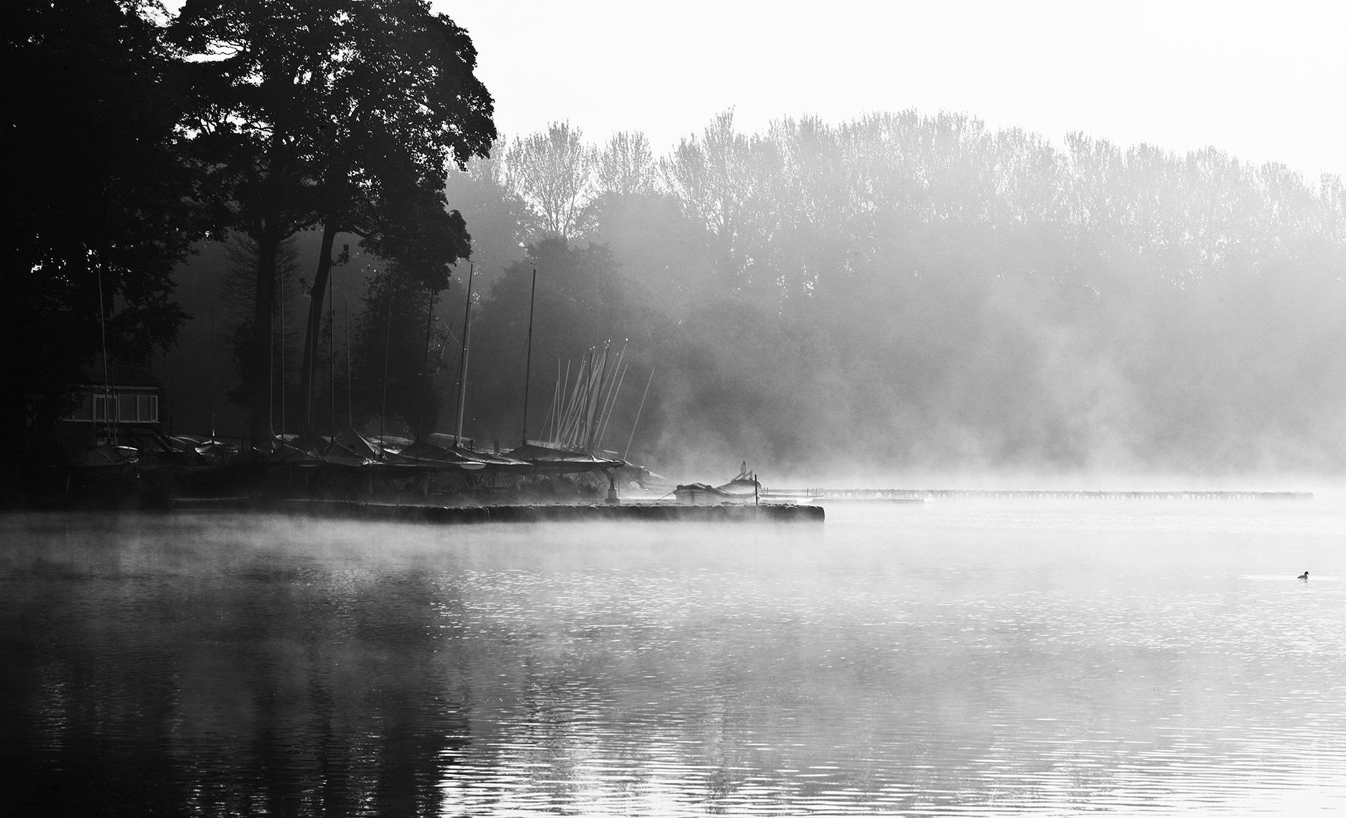 lake district photography 7