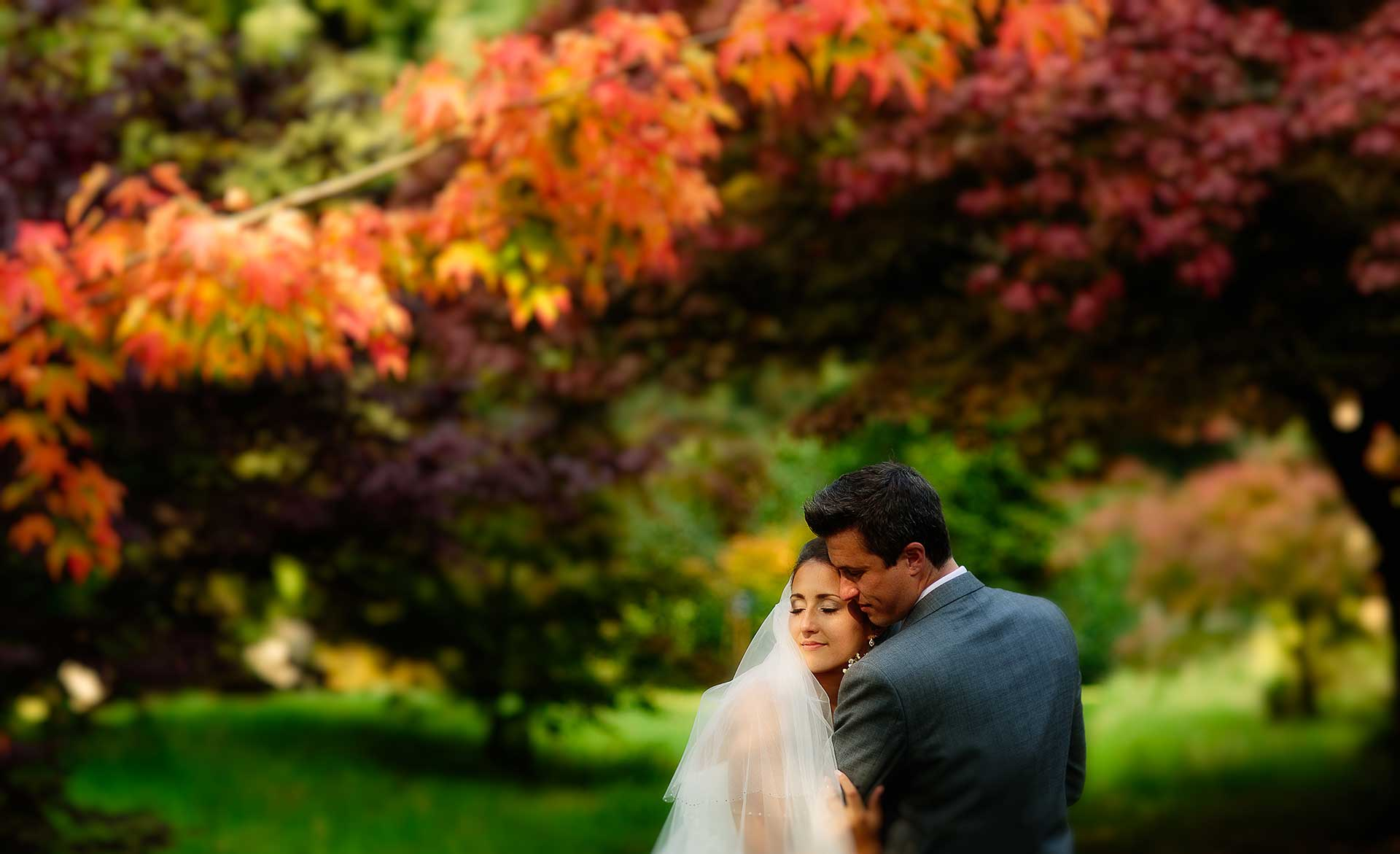 Stunning autumn colours with the bride and groom taken by Qualified Shropshire Wedding Photographer pbartworks at Comberemere Abbey