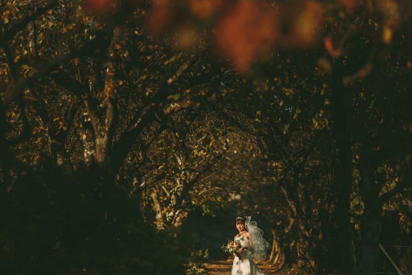 wedding photographer in shropshire 2573