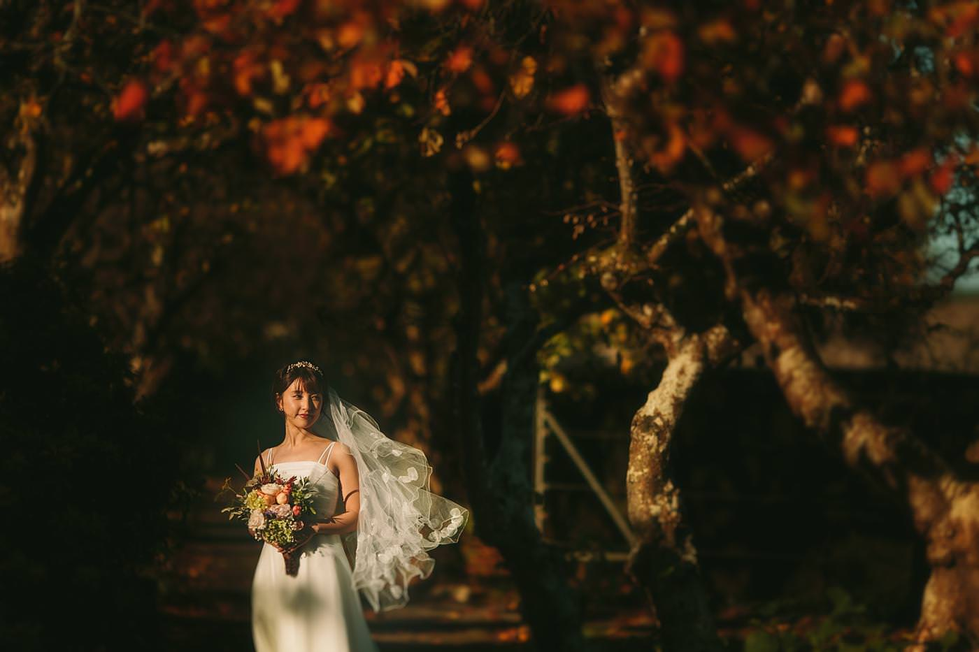 wedding photographer in shropshire 2581