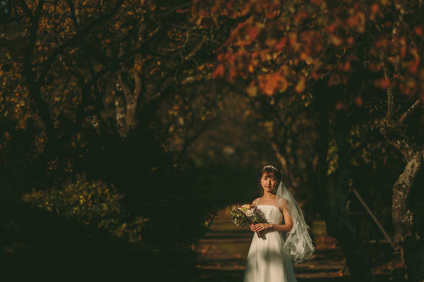 wedding photographer in shropshire 2587