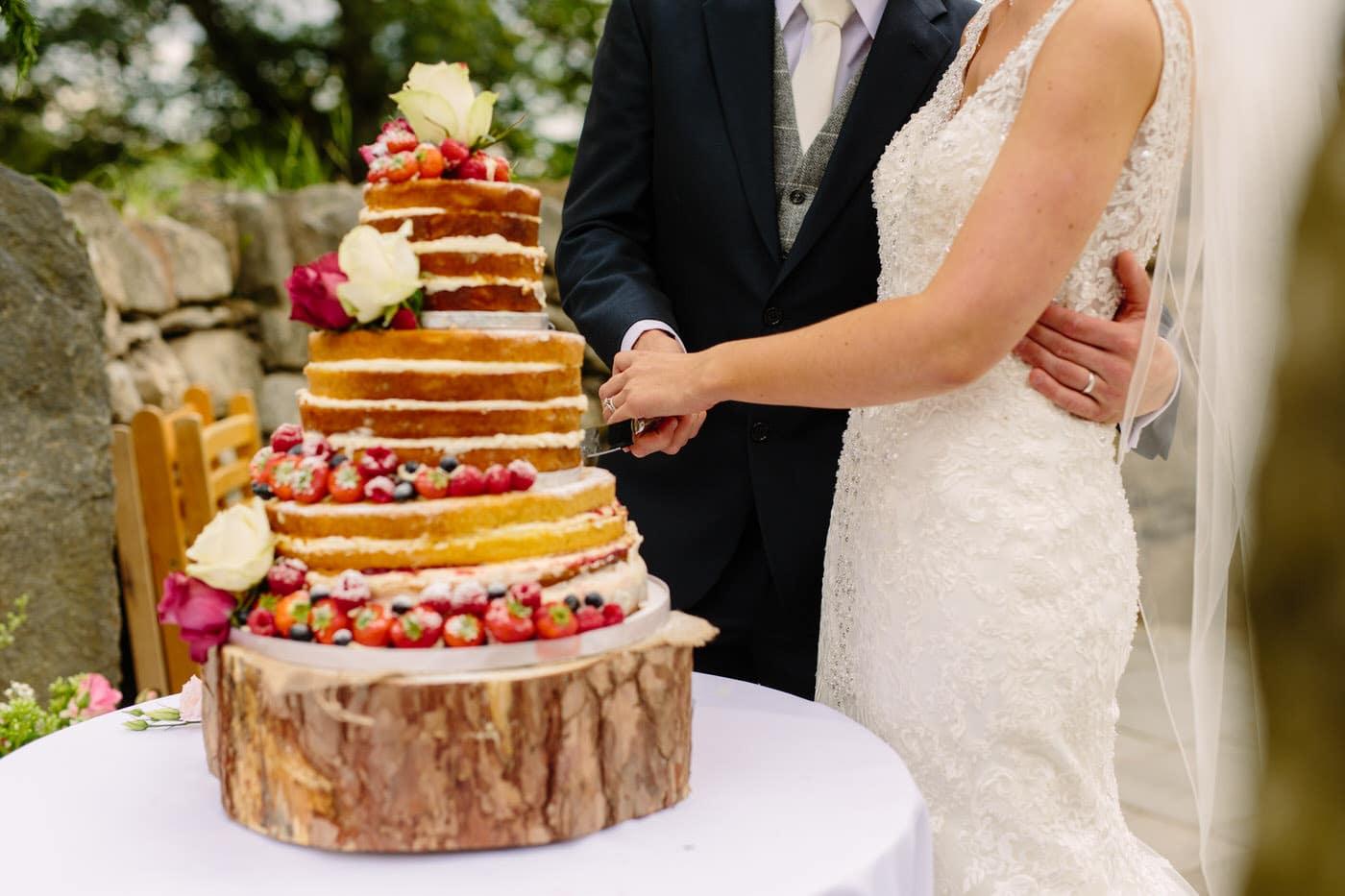 SG NORTH WALES WEDDING 923