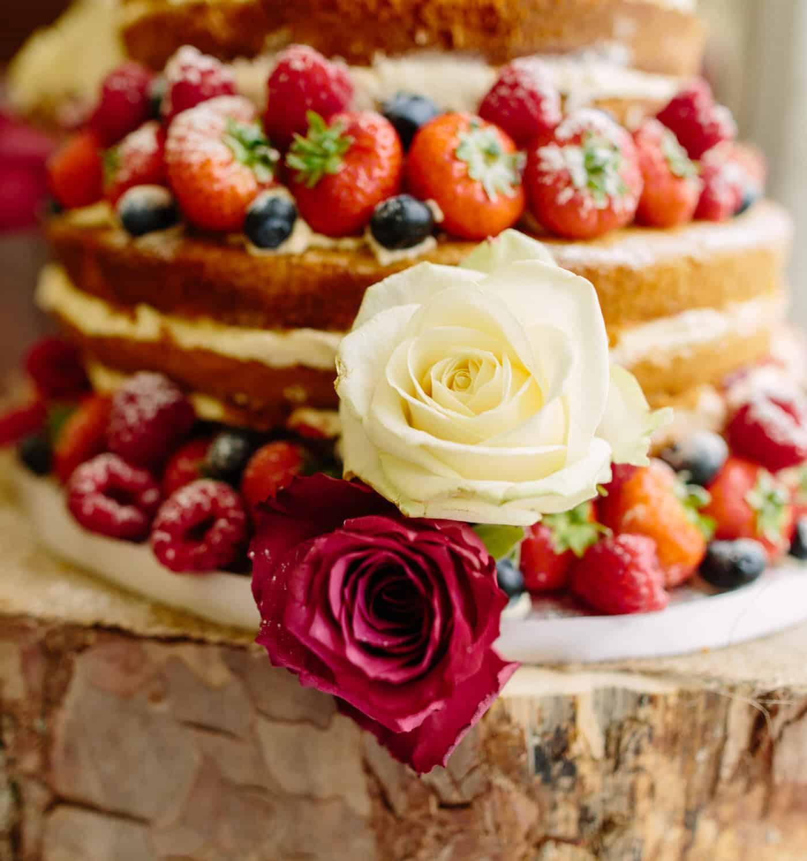 SG NORTH WALES WEDDING 947