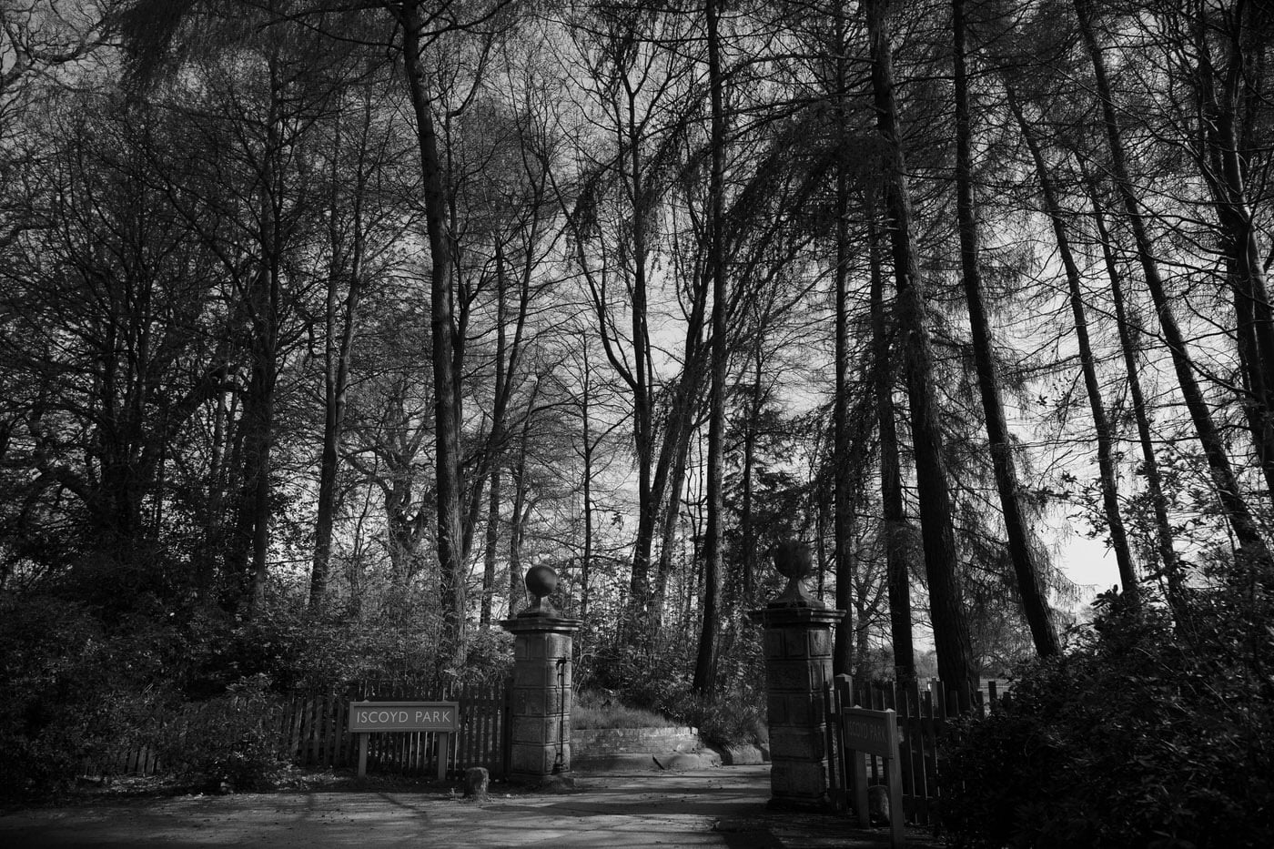 SHROPSHIRE-WEDDING-PHOTOGRAPHER-ISCOYD-PARK