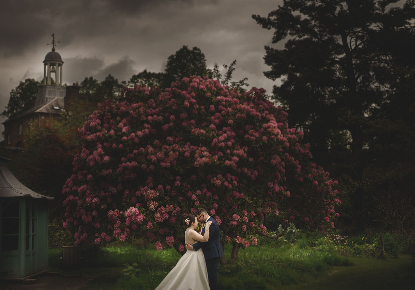 bride and groom portraits in front of a beautiful tree at a Walcot Hall Wedding