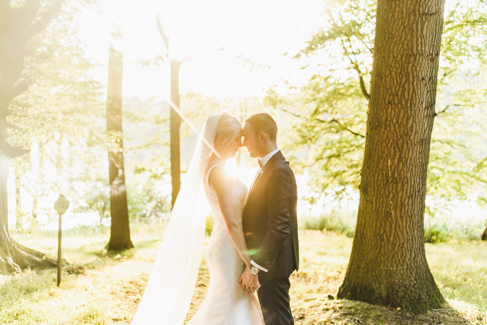 the sun shines at combermere as the bride and groom share an embrace